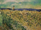 Loving Vincent - Wheat Field with Cornflowers