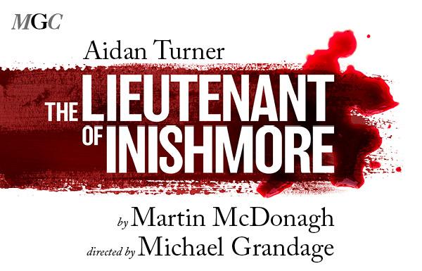 Aidan Turner to Make His Debut Playing Cat-Loving Irish Terrorist